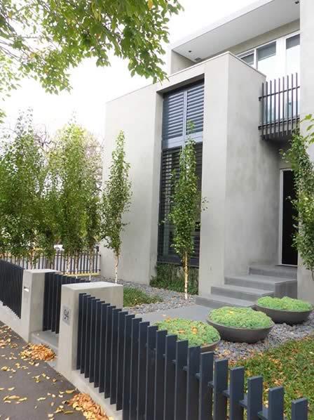 Albert Park Minimalist Garden Renata Fairhall Garden Designs