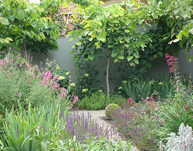 Middle Park Cottage Garden Renata Fairhall Garden Designs